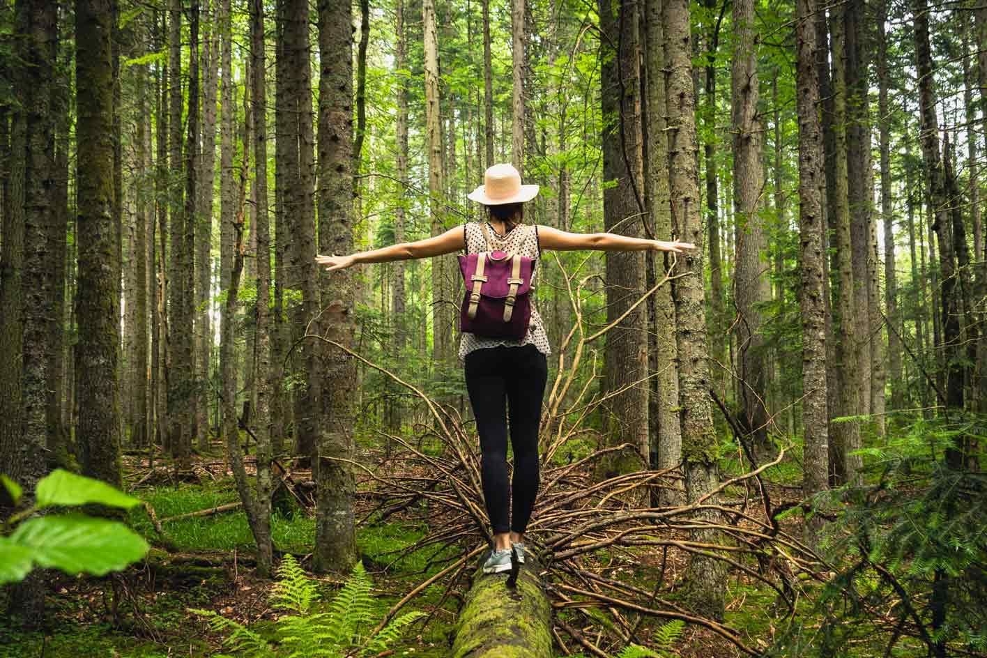 (re) donner du sens à sa vie professionnelle et/ou personnelle, PotenSiel, Solenne Perrinjaquet, liberté, authenticité, respect